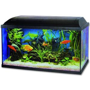 Akvarium set Pacific 60*30*30cm