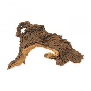 Dekorace Tropical wood S