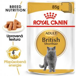 ECO PACK Royal Canin British Shorhair 12 x 85 g
