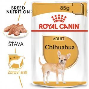 ECO PACK Royal Canin Chihuahua 12 x 85 g