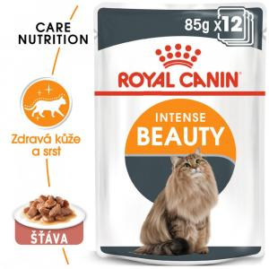 ECO PACK Royal Canin Intense Beauty 12 x 85 g