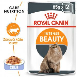 ECO PACK Royal Canin Intense Beauty Jelly 12 x 85 g