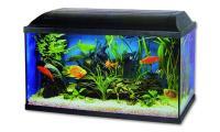Ilustrační obrázek Akvarium set Pacific 60 * 30 * 30cm