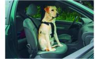 Ilustrační obrázek Beeztees Bezpečnostný postroj do auta M