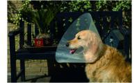 Ilustrační obrázek Beeztees Golier pre psov 22-25x7,5cm