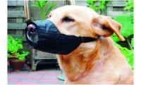Ilustrační obrázek Beeztees Náhubok pre psov nylonový 14cm