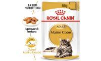 Ilustrační obrázek ECO PACK Royal Canin Maine Coon 12 x 85 g