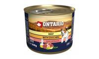 Ilustrační obrázek Konzerva ONTARIO mini beef, zucchini, dandelion and linseed oil 200g