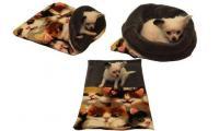Ilustrační obrázek Pelech pre šteniatka / mačiatka - mačka / sivá