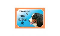 Ilustrační obrázek Tabuľka bernský salašnícky pes