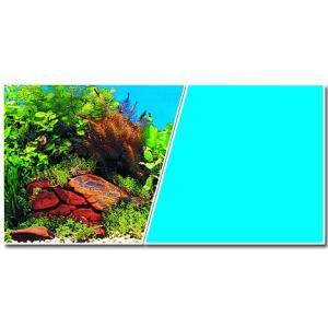 Pozadí sladkovodní oboustranné modré / rostliny