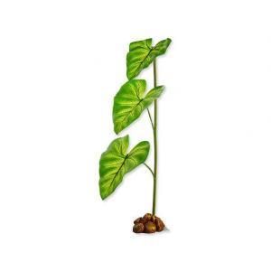 Hagen Exo Terra Dripper Plant L 55 cm