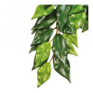 Hagen Exo Terra rostlina Ficus malá 45 cm